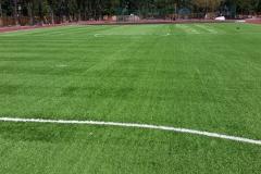 Искусственная трава на футбольном поле 5