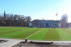 Искусственная трава на футбольном поле 6