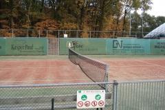 теннис (14)
