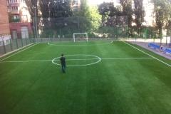 Искусственная трава на футбольном поле 1