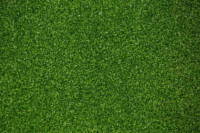 "PUTTING GREEN GRASS <p class=""price"">От 555 грн/кв.м.</p>"